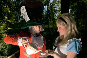 Alice_In_Wonderland_300x200a